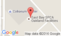 East Bay Spca - Theodore B. Travers Family Veterinary Clinic Location