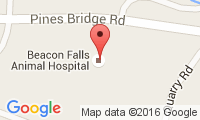 Beacon Falls Animal Hospital Location