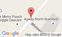 Veterinary Associates Of North Branford Location