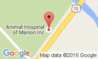 Animal Hospital Of Marion Location