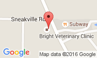 Bright Veterinary Clinic Location
