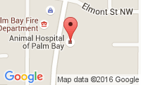 Animal Hospital Of Palm Bay Location