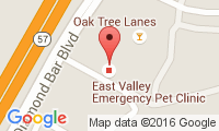 East Valley Emergency Pet Clinic Location