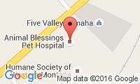 Animal Blessings Pet Hospital Location